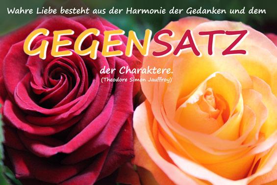 Wahre Liebe besteht aus der Harmonie der Gedanken