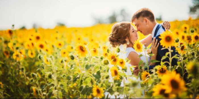 Sonnenblume Hochzeit