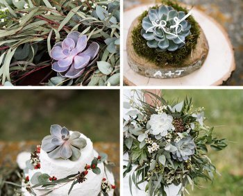 Sukkulenten für Hochzeitsdeko