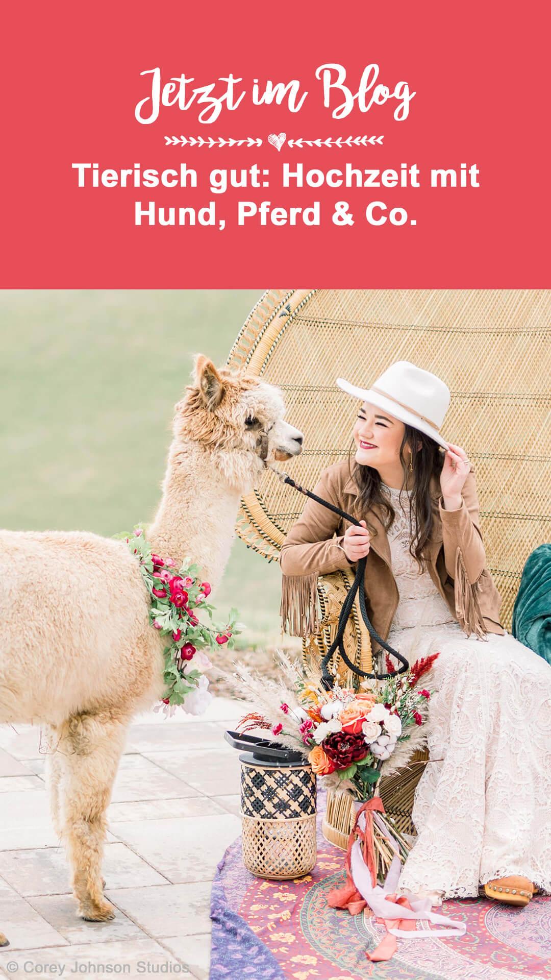 Hochzeit mit Hund Alpaka