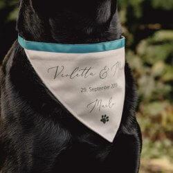 Hochzeitsoutfit Hund