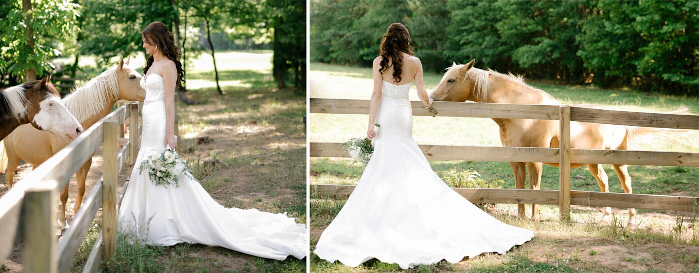 Pferde Hochzeit