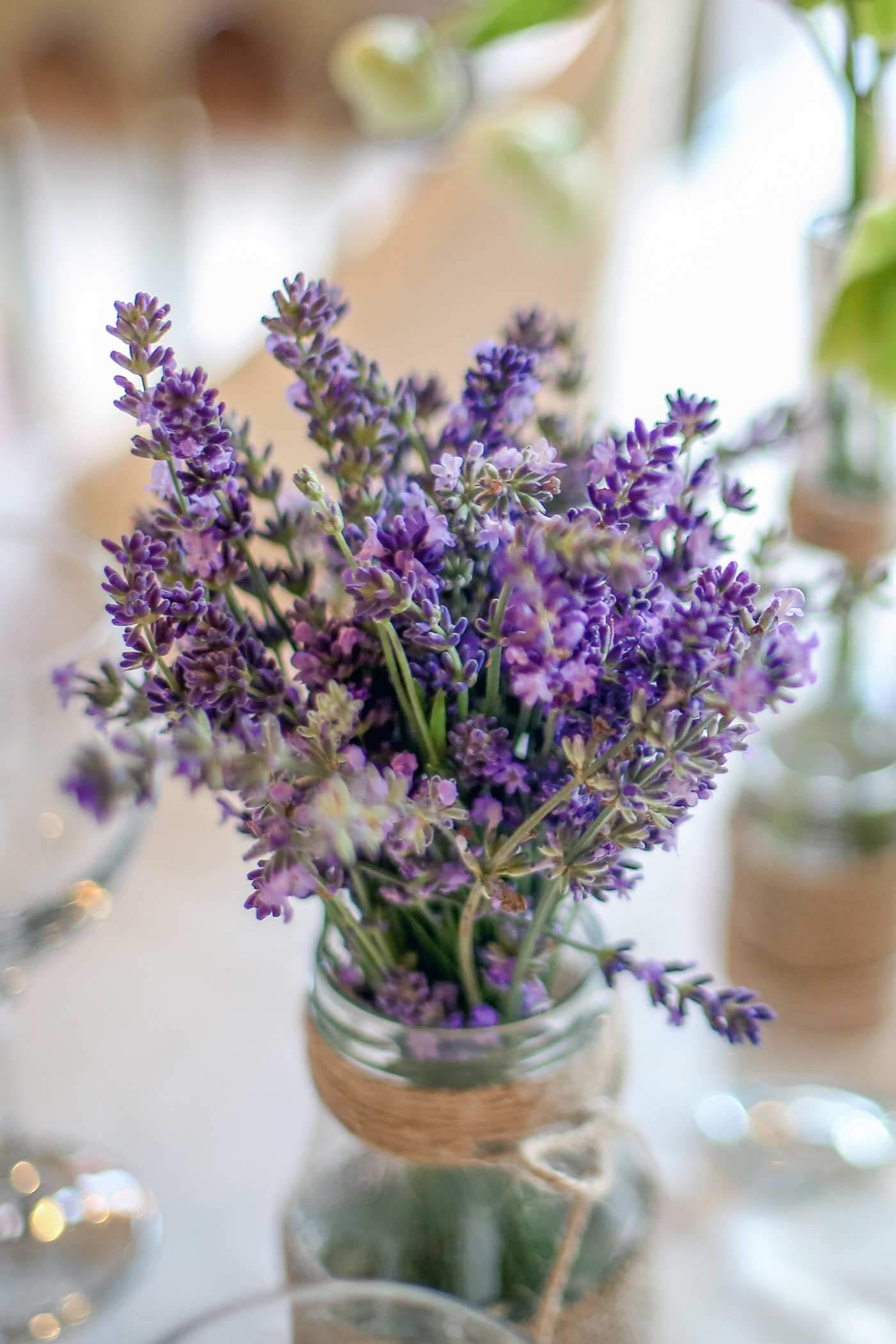 Lavendel Hochzeit